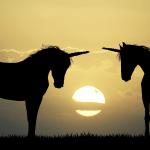 Nur wenige Fondsmanager überleben und übertreffen die Benchmark